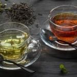 Зелёный и чёрный чай: сравнительная характеристика