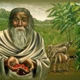 История развития и изобретения кофе