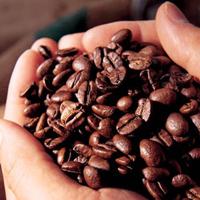 Как правильно определиться с выбором марки кофе